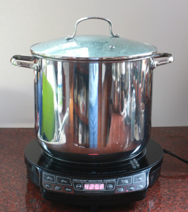 NuWave Pic Pro Burner With Pot
